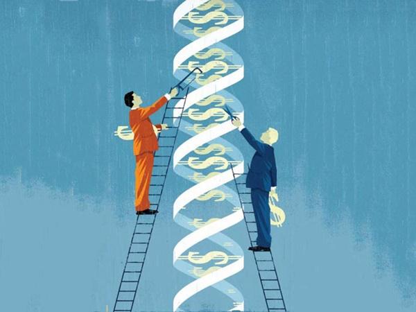 企业基因不是虚无主义的算命,而是模式和文化的重塑