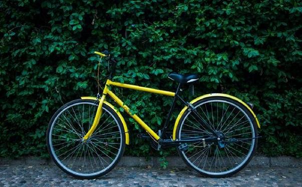 共享单车平台 ofo 宣布完成 D 轮 4.5 亿美元融资
