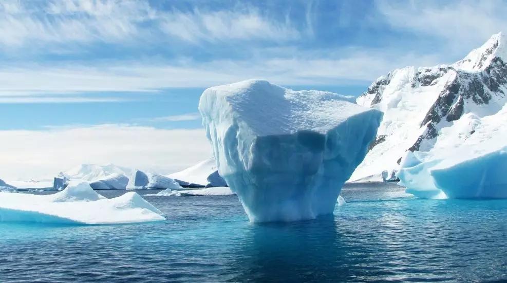 AI与环境保护:为目前地球面临的关键环境问题提供更可行的解决方案